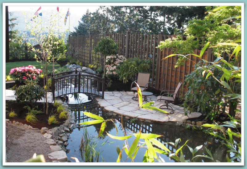 Eucalyptus Tree Service Landscaping and Design in Nanaimo
